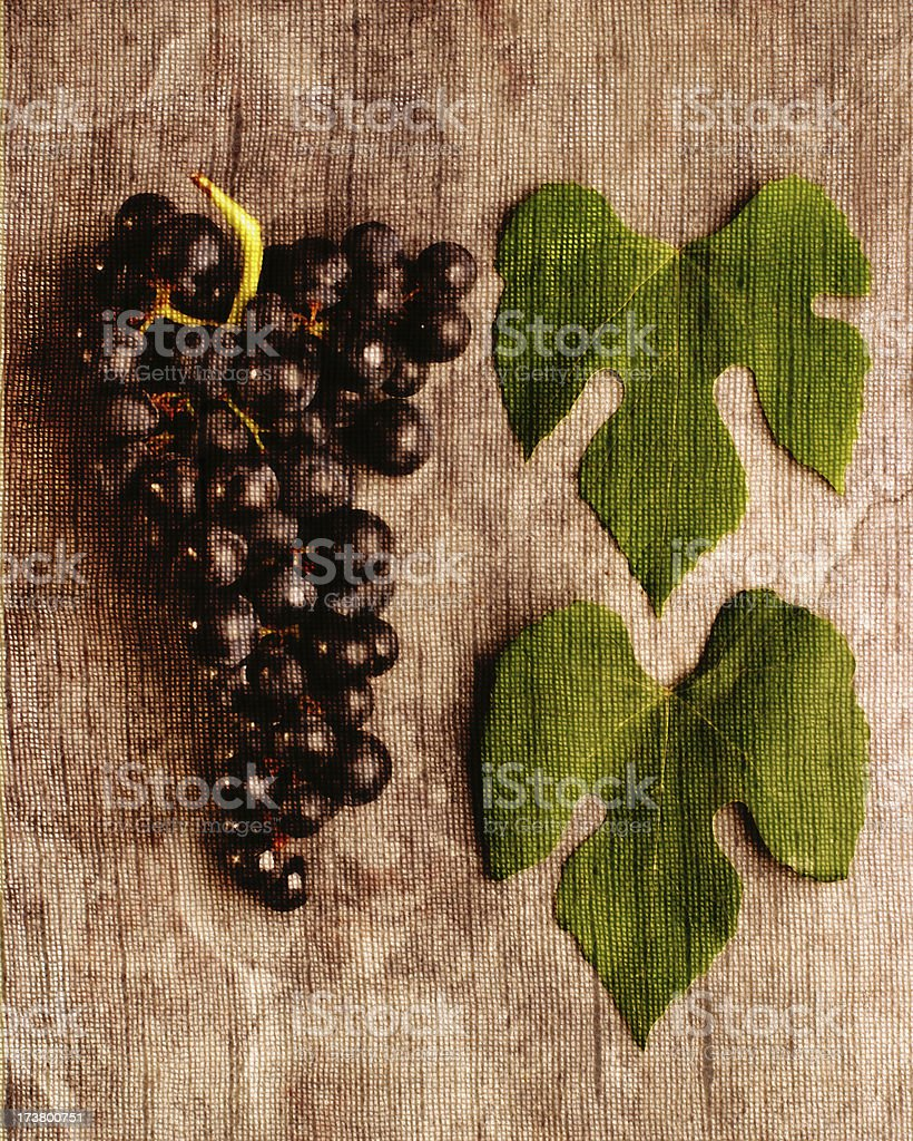 Grape Art stock photo