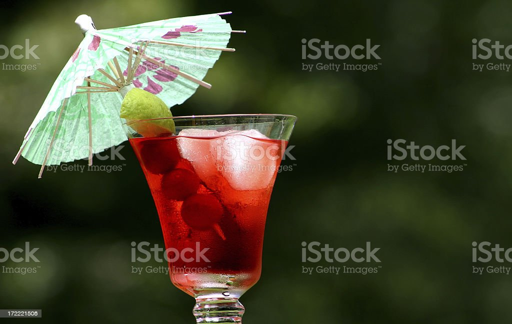 Grape Cranberry royalty-free stock photo