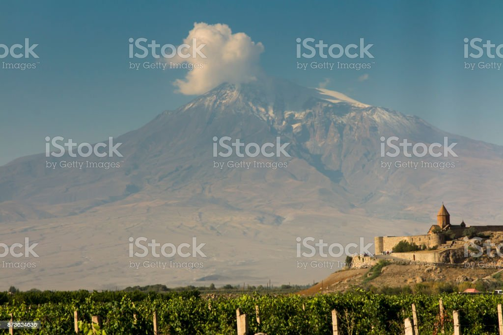 Grape field in Ararat valley. View of Khor Virap and Mount Ararat. stock photo