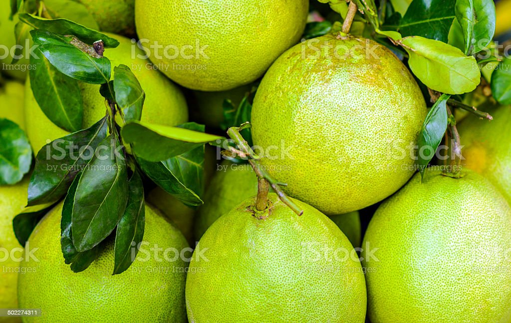 Grapefruit pummelo royalty-free stock photo