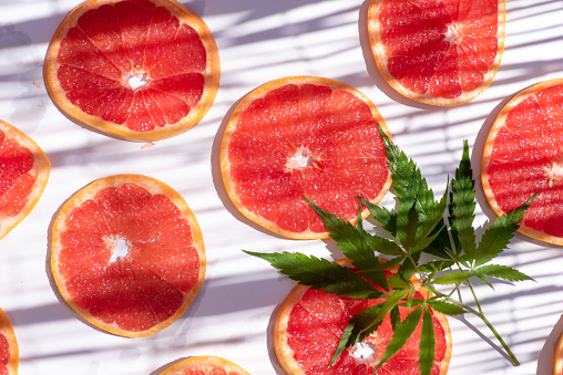 Grapefruit slices with cannabis leafs on white background with nice and soft shadows flat lay top view