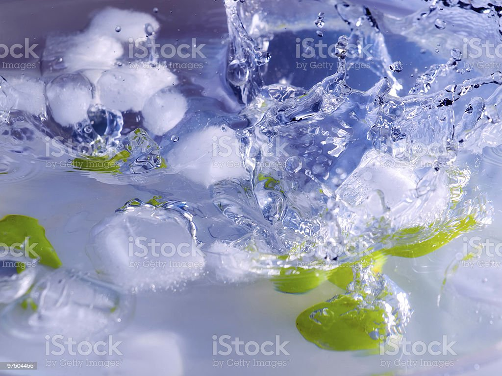 Grapes and ice royalty-free stock photo