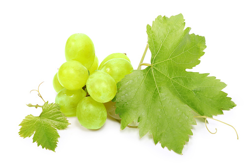 Grapes and leaves on a white background