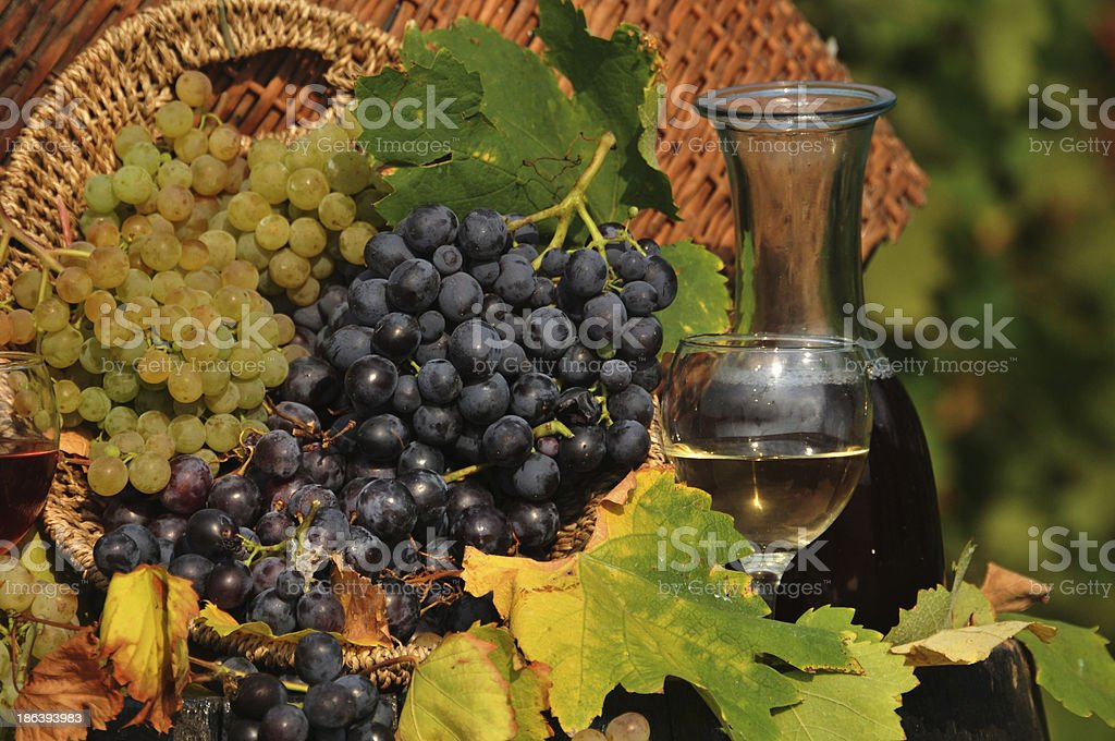 Grapes and wine in the bottles stock photo