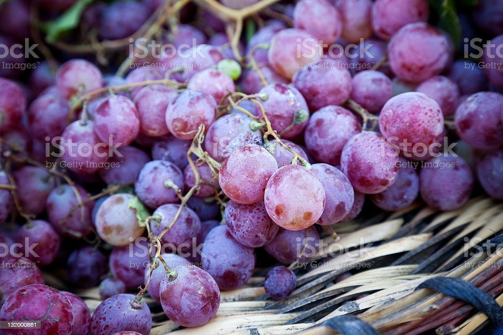 Grapes close up royalty-free stock photo