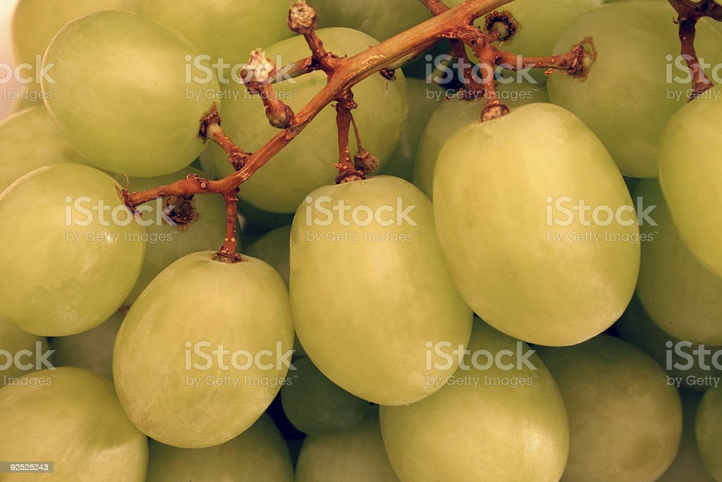 Grapes in extreme closeup royalty-free stock photo