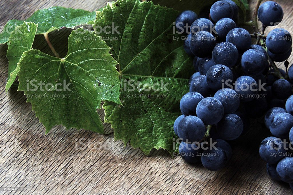 Grapes on a white background stock photo
