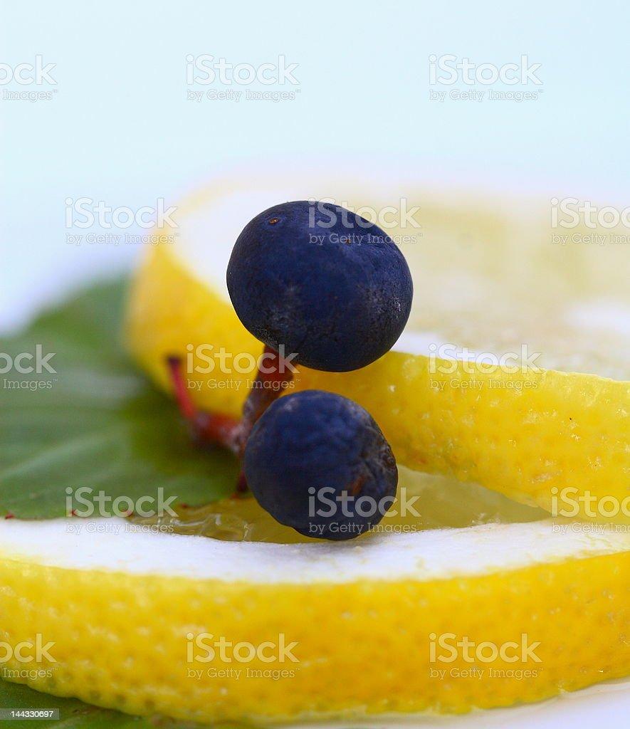 grapes on the lemon royalty-free stock photo