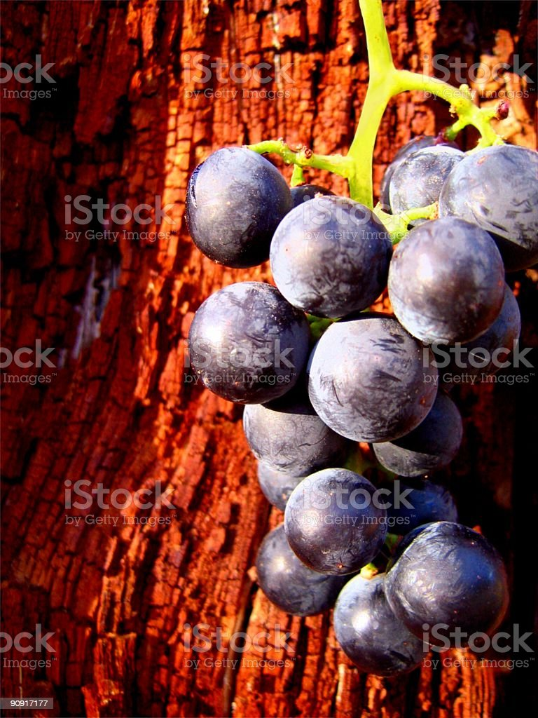 Grapes on Wood stock photo