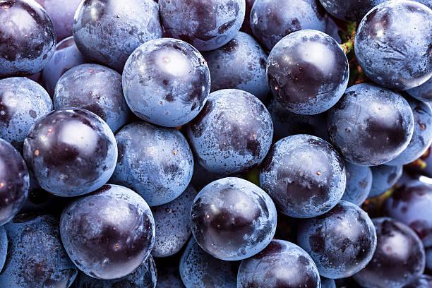 uvas - grapes imagens e fotografias de stock