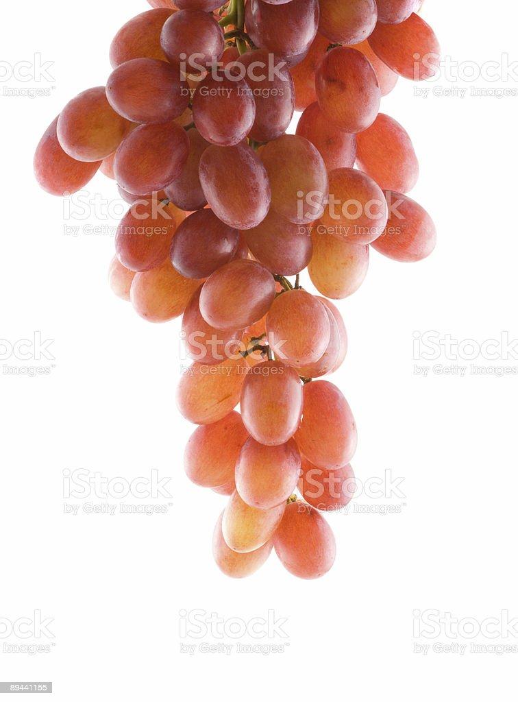 Grapes royaltyfri bildbanksbilder