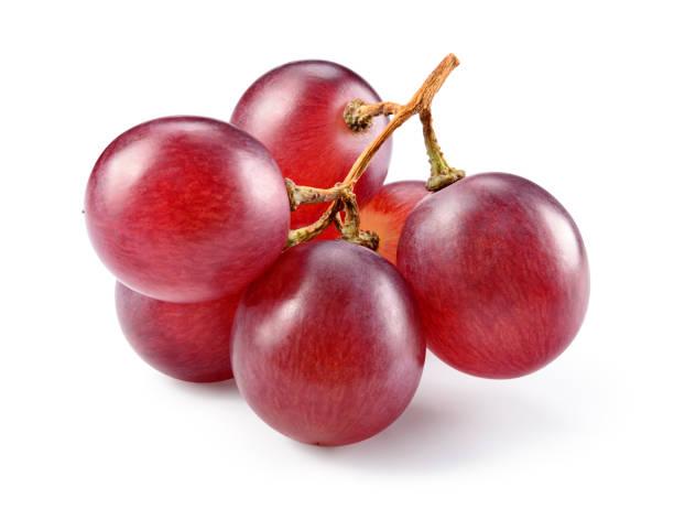 grapes. red grape. grape branch isolated on white. - grapes imagens e fotografias de stock