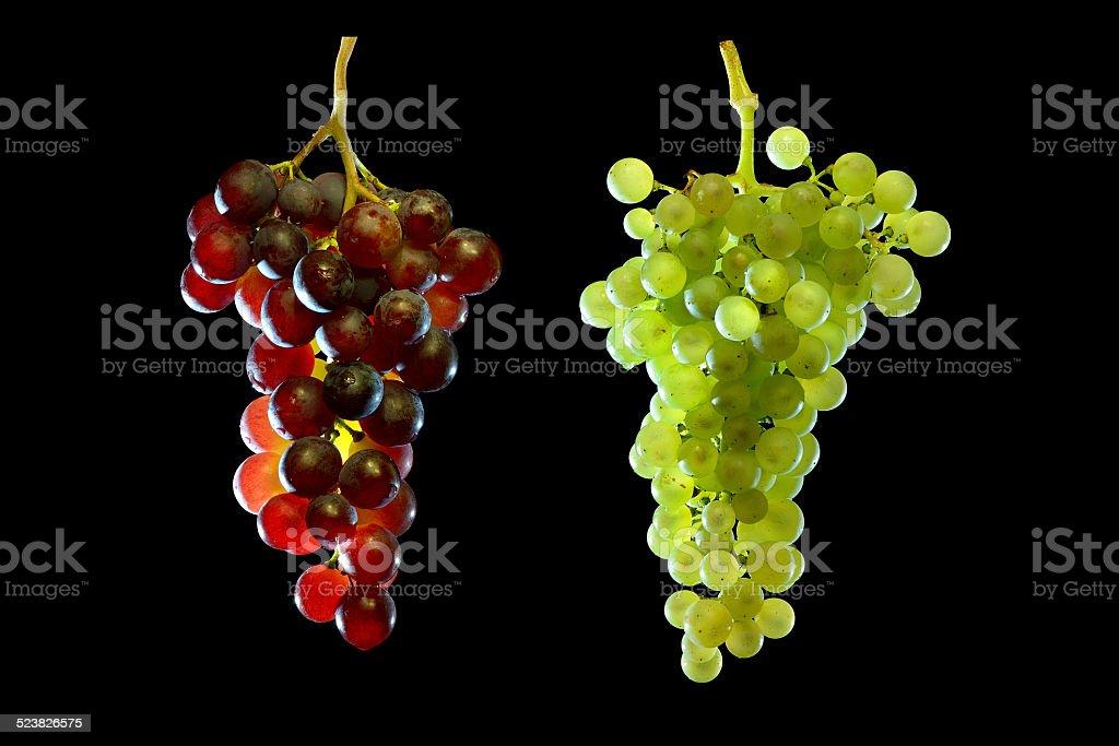 grapes vine stock photo