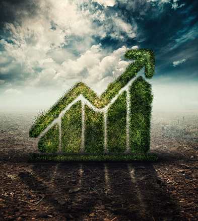istock Graph made of grass on a field. The concept of natural growth and improvement. 1063169980