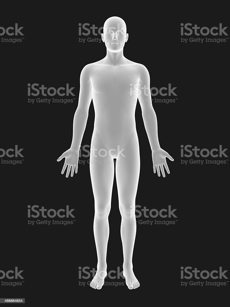 Graphic 3D illustration of male human body stock photo