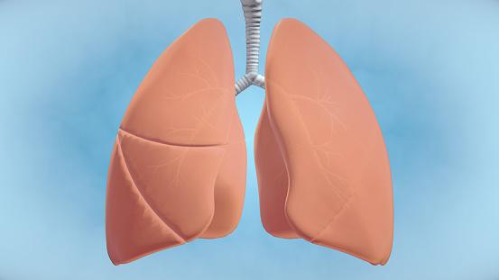 istock Graphic Visualisation of Healthy Human Lungs 1220681072