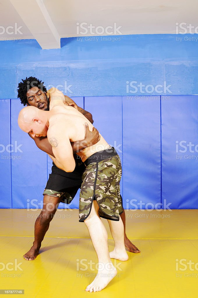 Grappling Martial Artists stock photo