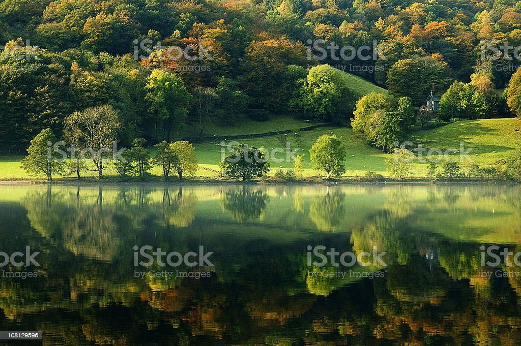 Grasmere Lake Reflection stock photo
