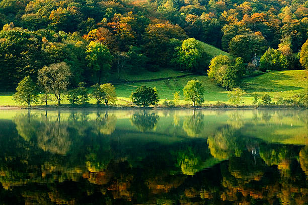 Grasmere Lake Reflection  cumbria stock pictures, royalty-free photos & images