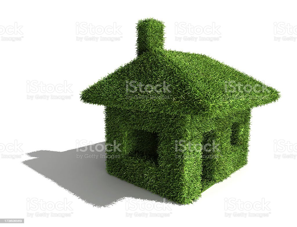 Grass 3D house royalty-free stock photo