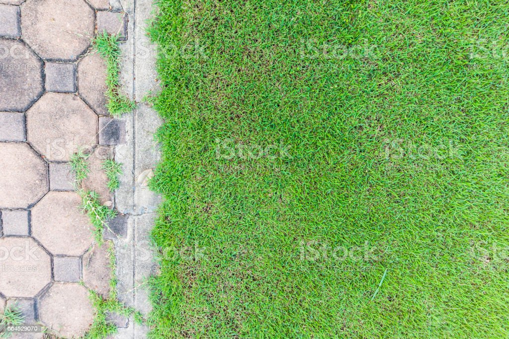grass and brick background royalty-free stock photo