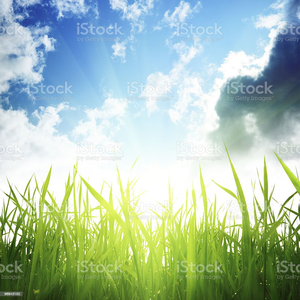 grass and cloudy sky royalty-free stock photo