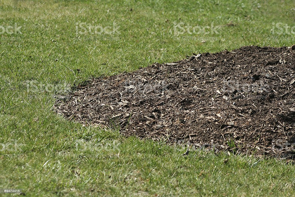 Grass and Mulch stock photo