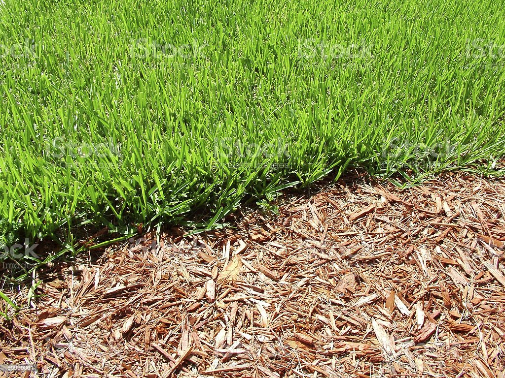 Grass and Mulch royalty-free stock photo