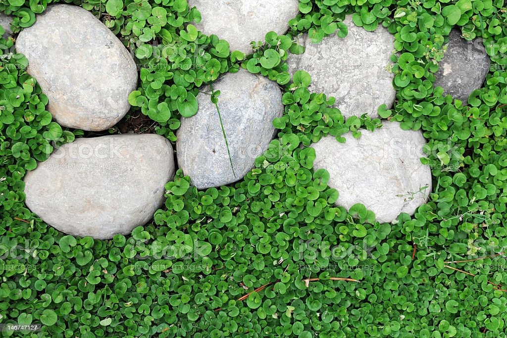 Grass and Pebble royalty-free stock photo