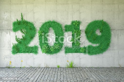 2019 Concept with grass and green plants