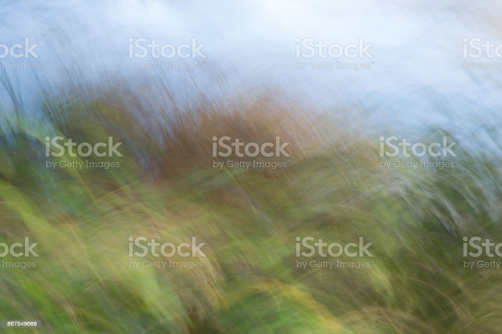 Grass and sky blurred. stock photo