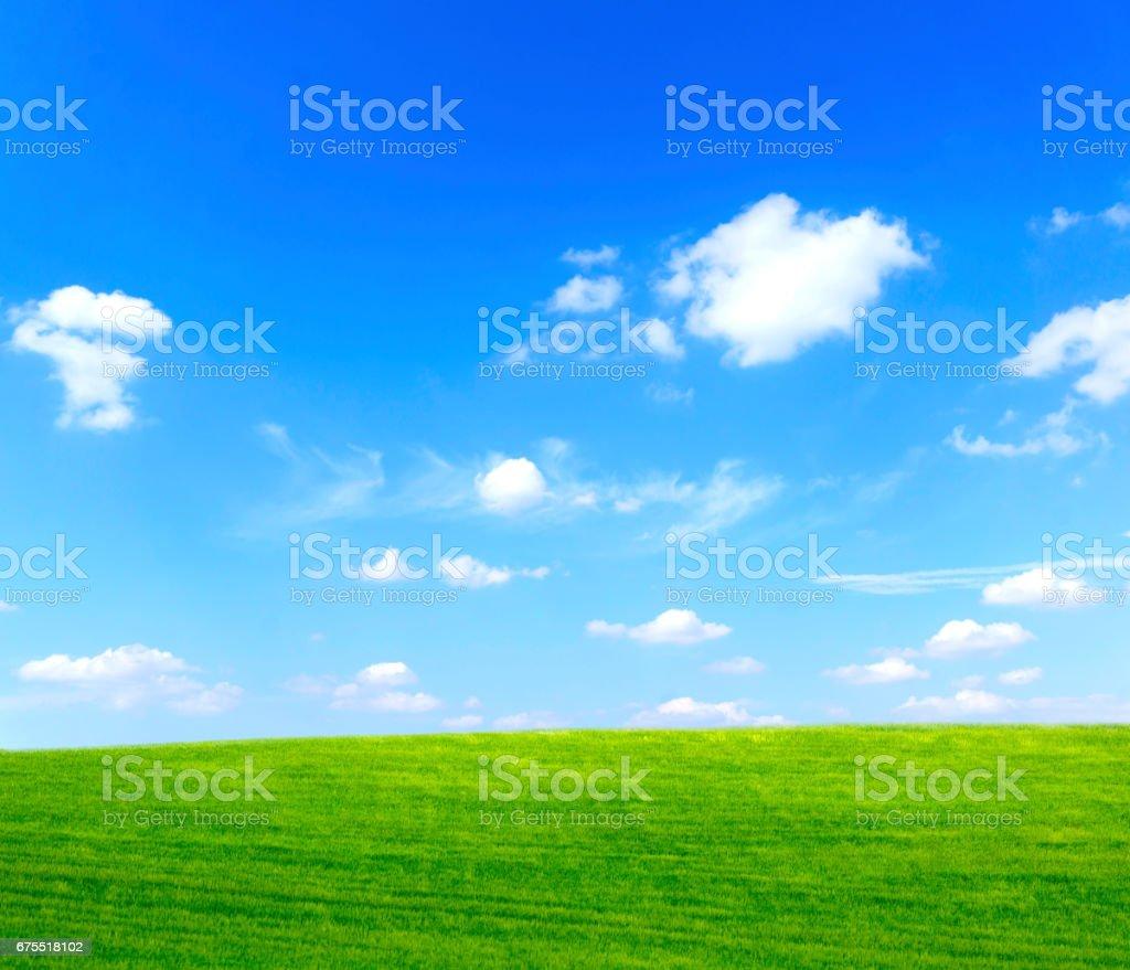 Çim ve gökyüzü royalty-free stock photo