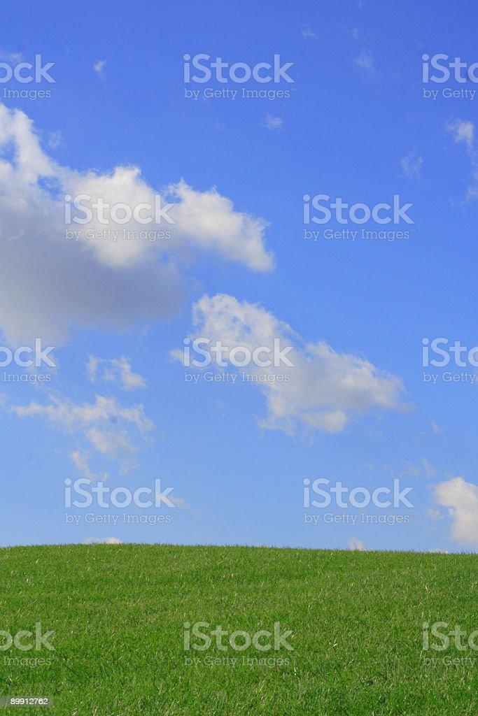 Gras und Himmel Lizenzfreies stock-foto