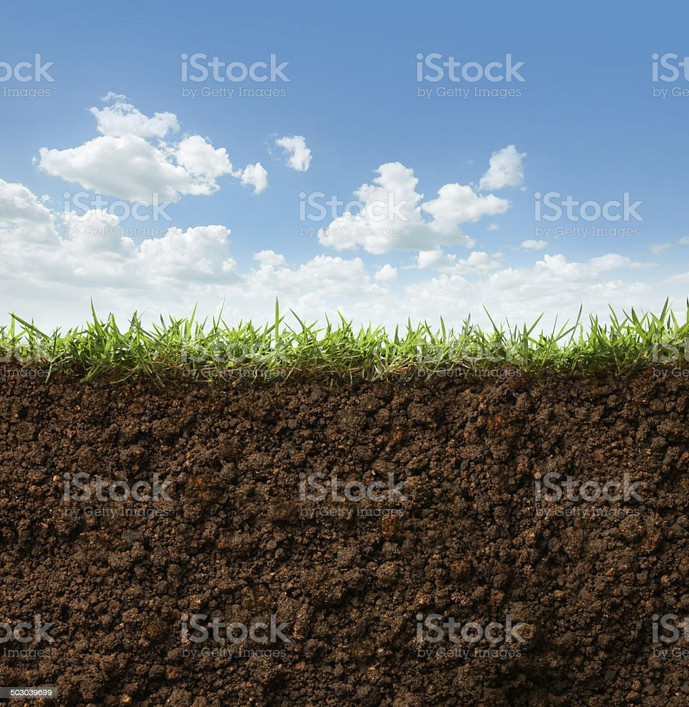 grass and soil stock photo
