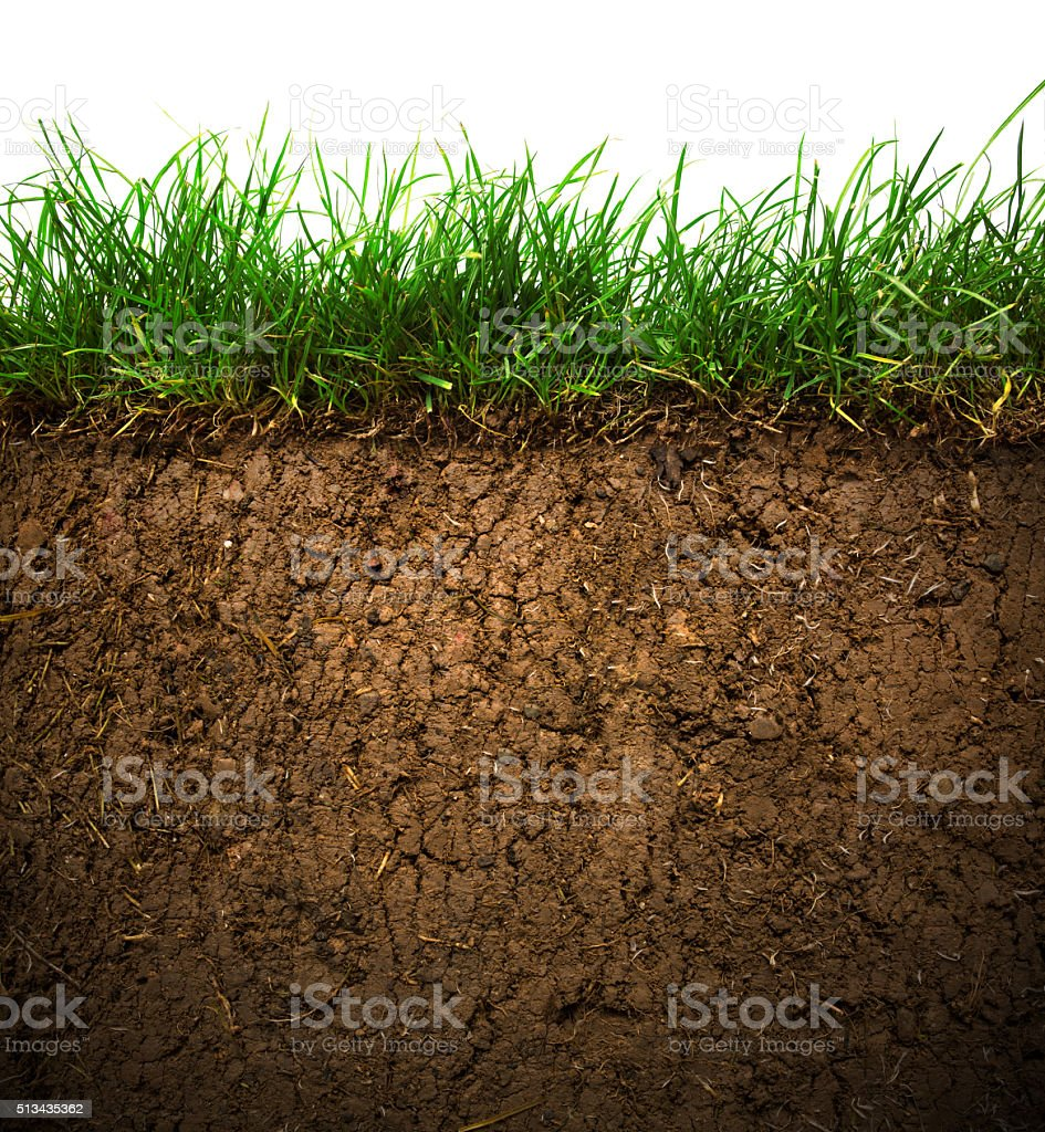 Grass and soil​​​ foto