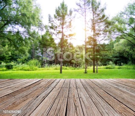 601026242istockphoto Grass and trees in public park 1074254792