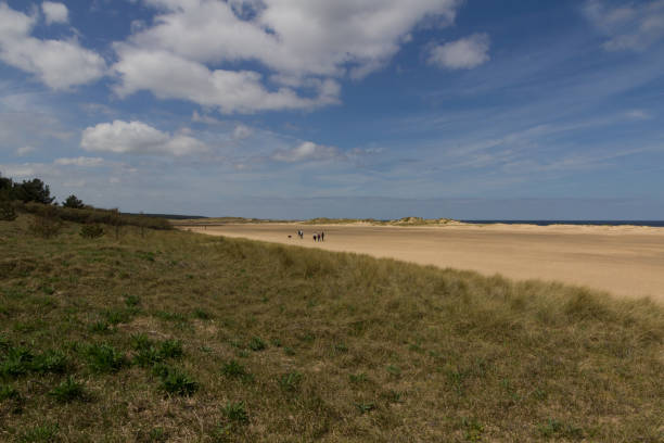 Grass area and sand dunes on the beach at Wells-next-the-Sea stock photo