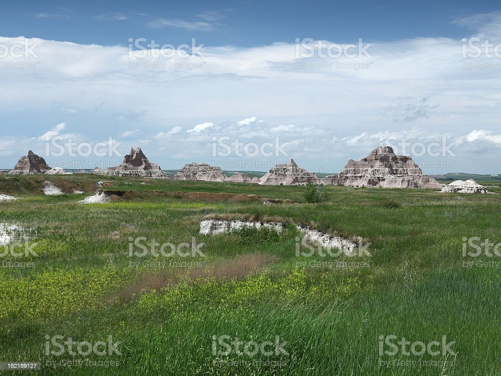 Grass at Badlands Wilderness royalty-free stock photo