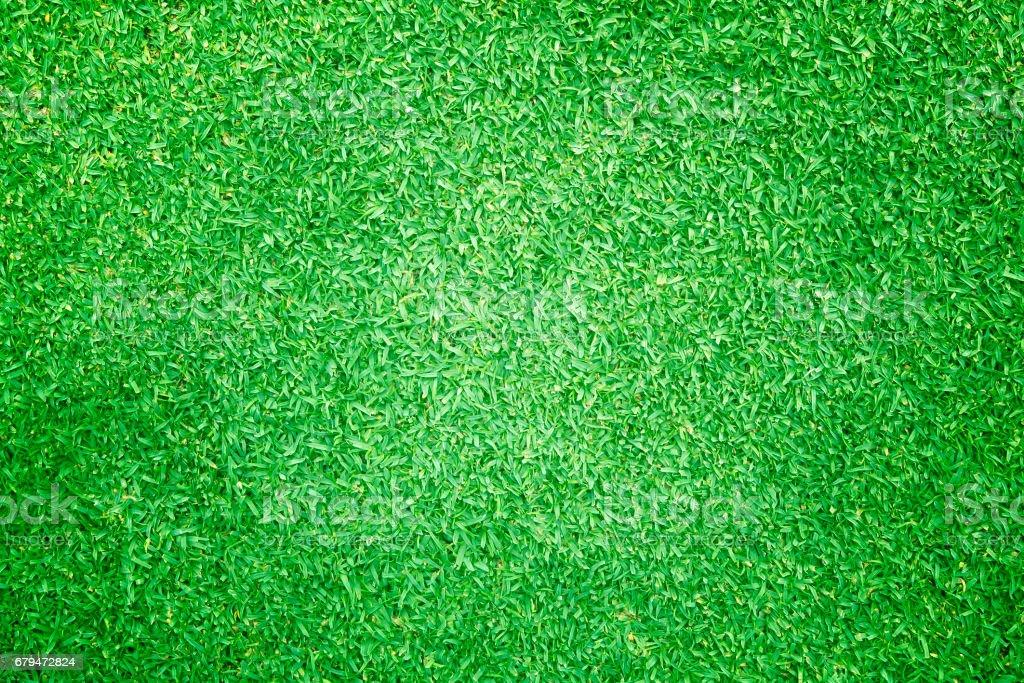 草背景高爾夫球場綠色草坪圖案 免版稅 stock photo