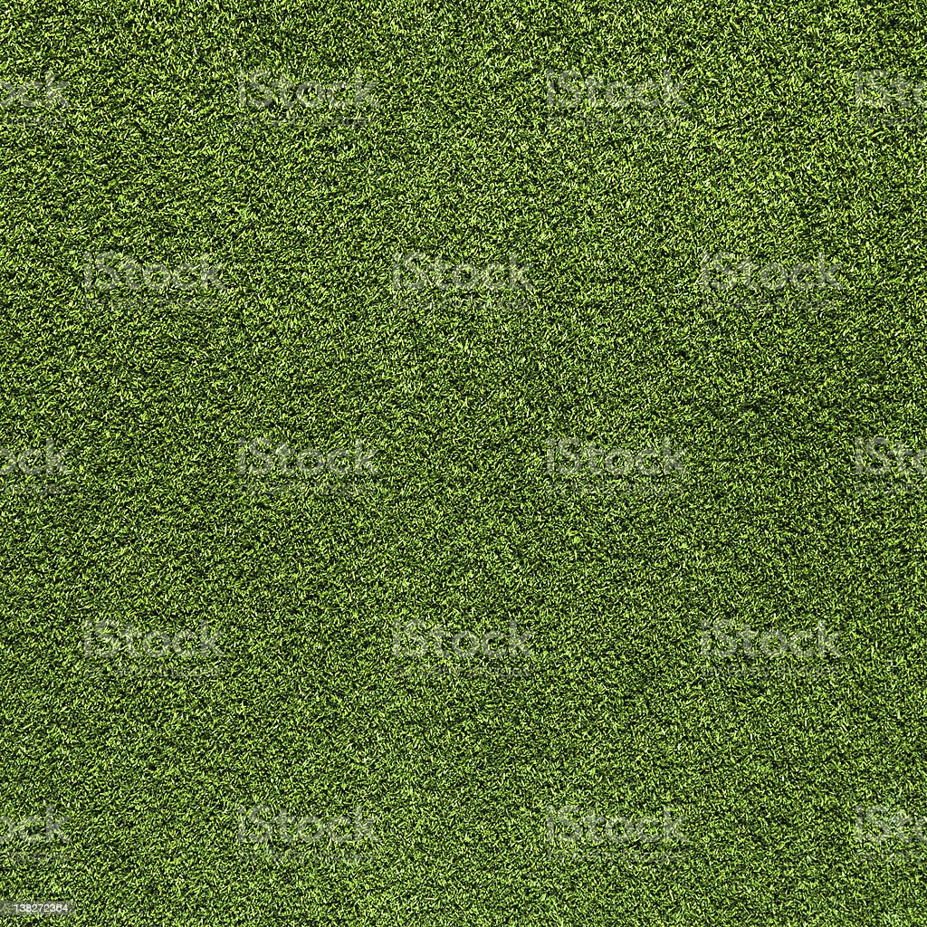Grass  background stock photo