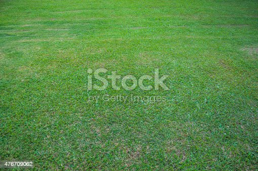 istock Grass background 476709062