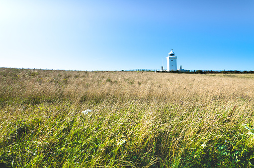 Grass bends in the wind at the South Foreland Lighthouse in summer