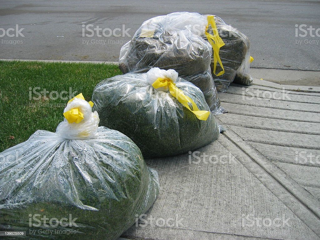 Grass clippings royalty-free stock photo