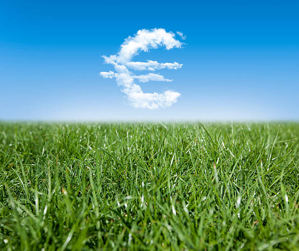 Grass & Clouds stock photo