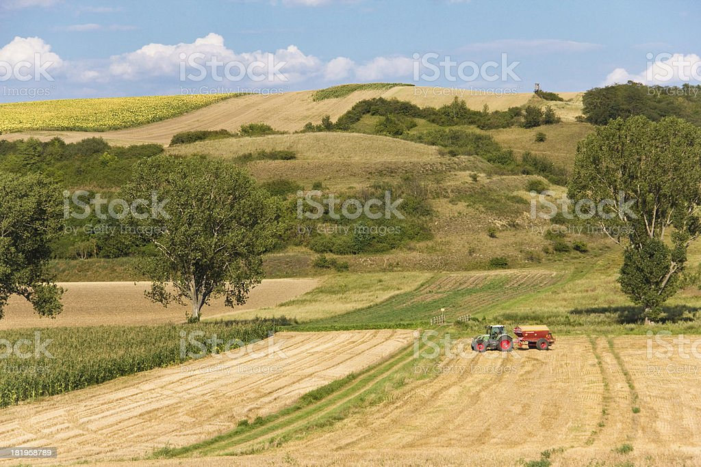 grass collected in a haystack royalty-free stock photo