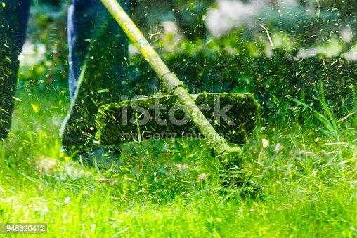 istock grass cutting in the garden 946820412