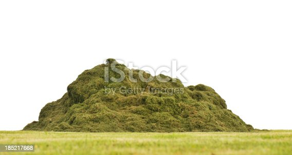Large heap of cut grass isolated on white background. Focus on heap.