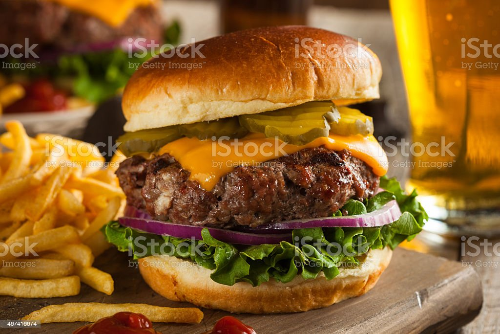Grass fed bison cheeseburger with fries  stock photo