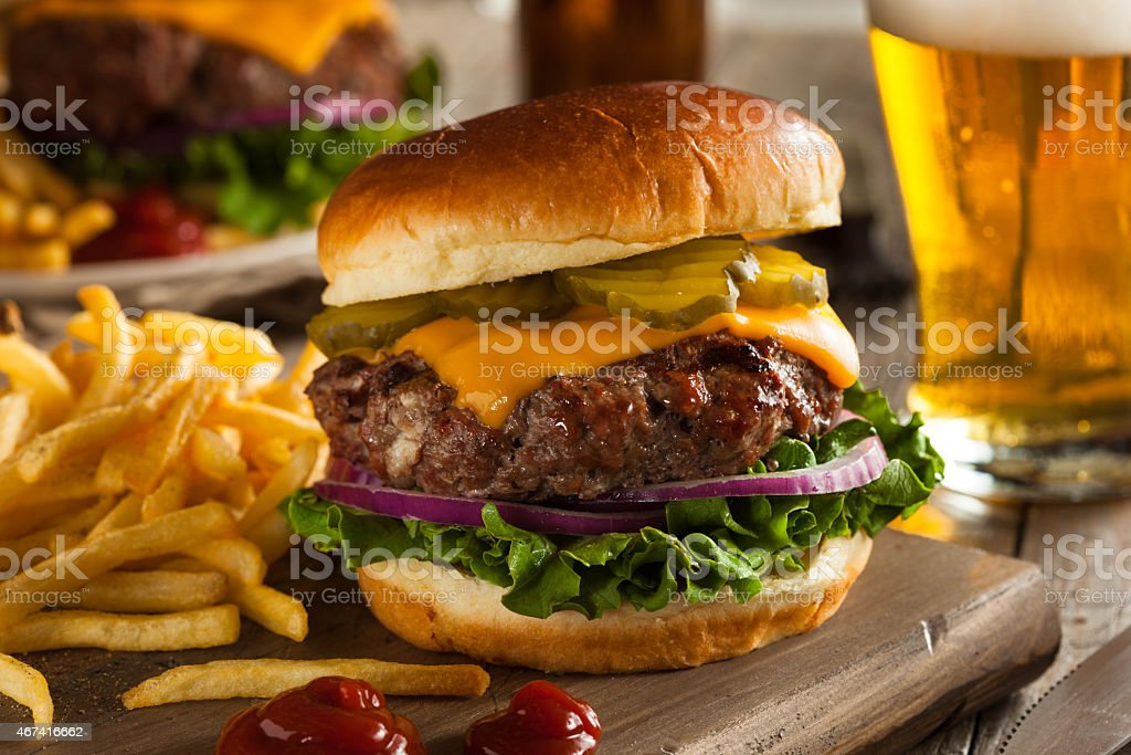 Grass Fed Bison Hamburger stock photo