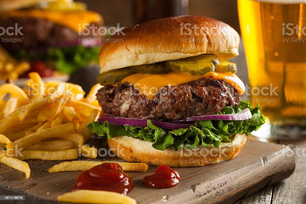 Grass Fed Bison Hamburger stock photo